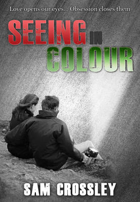 Seeing in Colour (Paperback)