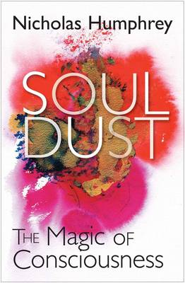 Soul Dust: The Magic of Consciousness (Hardback)