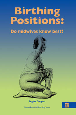 Birthing Positions: The Evidence  - What Do Women Want? What Do Midwives Want? (Paperback)