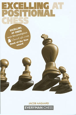 Excelling at Positional Chess: (Paperback)