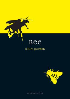 Bee - Animal (Paperback)