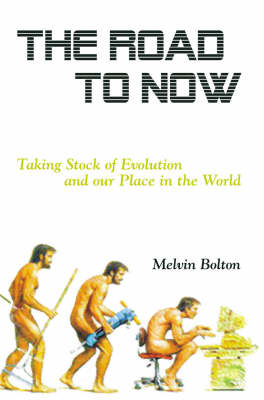 The Road to Now: Taking Stock of Evolution and Our Place in the World (Paperback)