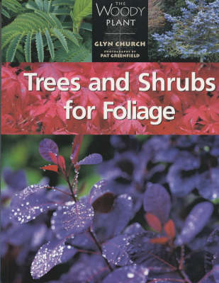 Trees and Shrubs for Foliage - The woody plant (Paperback)