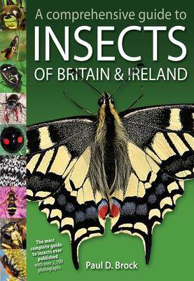 A Comprehensive Guide to Insects of Britain and Ireland (Hardback)