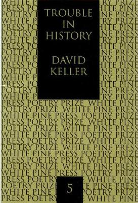 Trouble in History - White Pine Press Poetry Prize (Paperback)