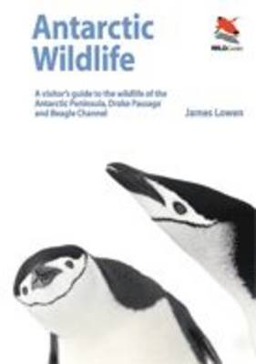 Antarctic Wildlife: A Visitor's Guide - Wildguides (Paperback)