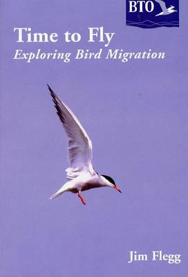 Time to Fly: Exploring Bird Migration (Paperback)