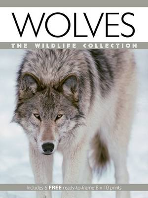 Wolves - Wildlife Collection (Paperback)