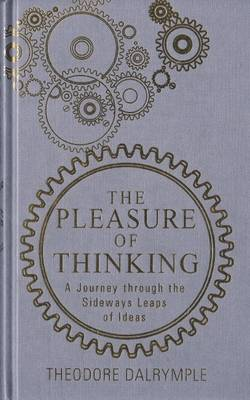 The Pleasure of Thinking: A Journey Through the Sideways Leaps of Ideas (Paperback)
