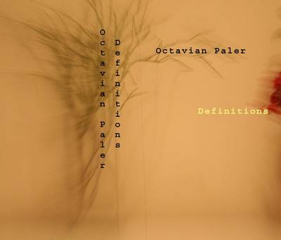 Definitions (Paperback)