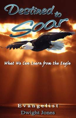 Destined to Soar (Paperback)