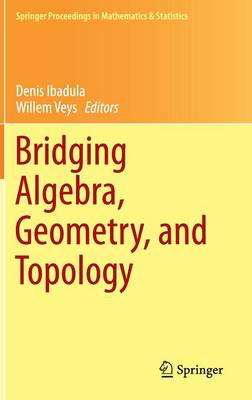 Bridging Algebra, Geometry, and Topology - Springer Proceedings in Mathematics and Statistics 96 (Hardback)
