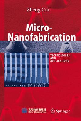 Micro-nanofabrication: Technologies and Applications (Paperback)