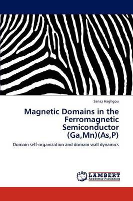 Magnetic Domains in the Ferromagnetic Semiconductor (Ga, MN)(As, P) (Paperback)