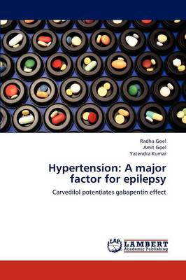 Hypertension: A Major Factor for Epilepsy (Paperback)