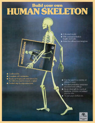 Build Your Own Human Skeleton (Paperback)