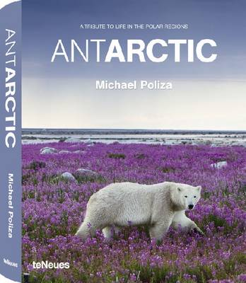 Antarctic: A Tribute to Life in the Polar Regions (Hardback)