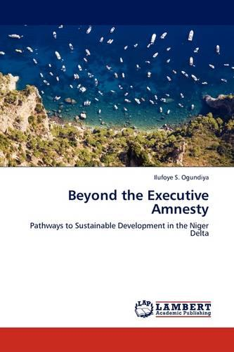 Beyond the Executive Amnesty (Paperback)