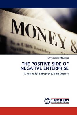 The Positive Side of Negative Enterprise (Paperback)