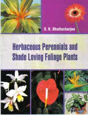 Herbaceous Perennials and Shade Loving Foliage Plants (Hardback)