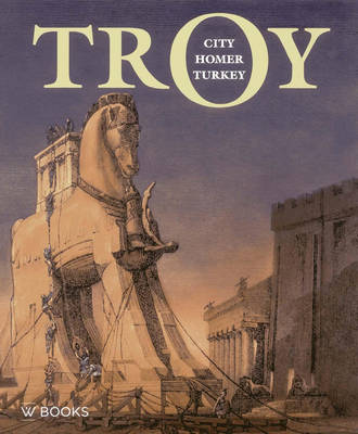 Troy: City, Homer and Turkey (Paperback)