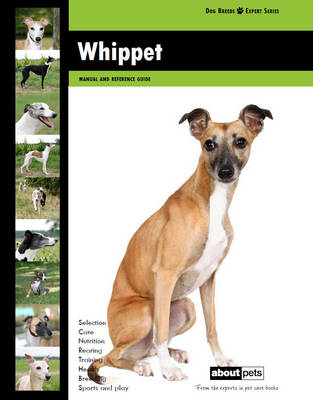 Whippet - Dog Breed Expert Series (Paperback)