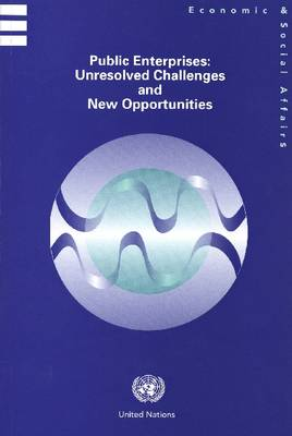 Public Enterprises: Unresolved Challenges and New Opportunities (Paperback)