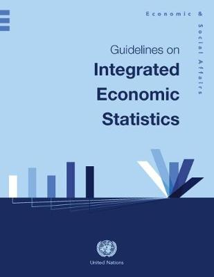 Guidelines on Integrated Economic Statistics (Paperback)