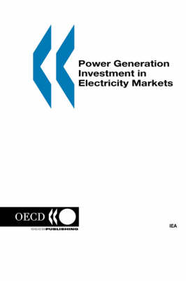 Power Generation Investment in Electricity Markets (Paperback)
