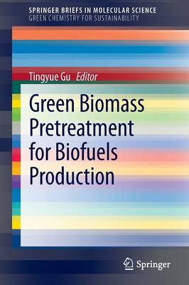 Green Biomass Pretreatment for Biofuels Production - SpringerBriefs in Molecular Science / SpringerBriefs in Green Chemistry for Sustainability (Paperback)