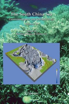 The South China Sea: Paleoceanography and Sedimentology - Developments in Paleoenvironmental Research 13 (Paperback)
