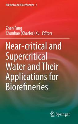 Near-Critical and Supercritical Water and Their Applications for Biorefineries - Biofuels and Biorefineries 2 (Hardback)