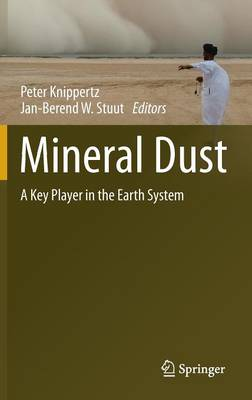 Mineral Dust: A Key Player in the Earth System (Hardback)