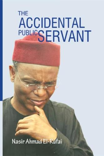 The Accidental Public Servant (Paperback)