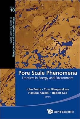 Pore Scale Phenomena : Frontiers in Energy and Environment - World Scientific Series in Nanoscience and Nanotechnology 10 (Hardback)