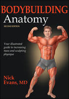 Bodybuilding Anatomy